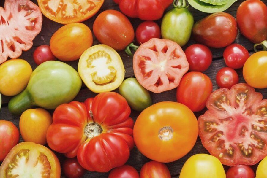 Tomāti (dažādas šķirnes) /Solanum lycopersicum/